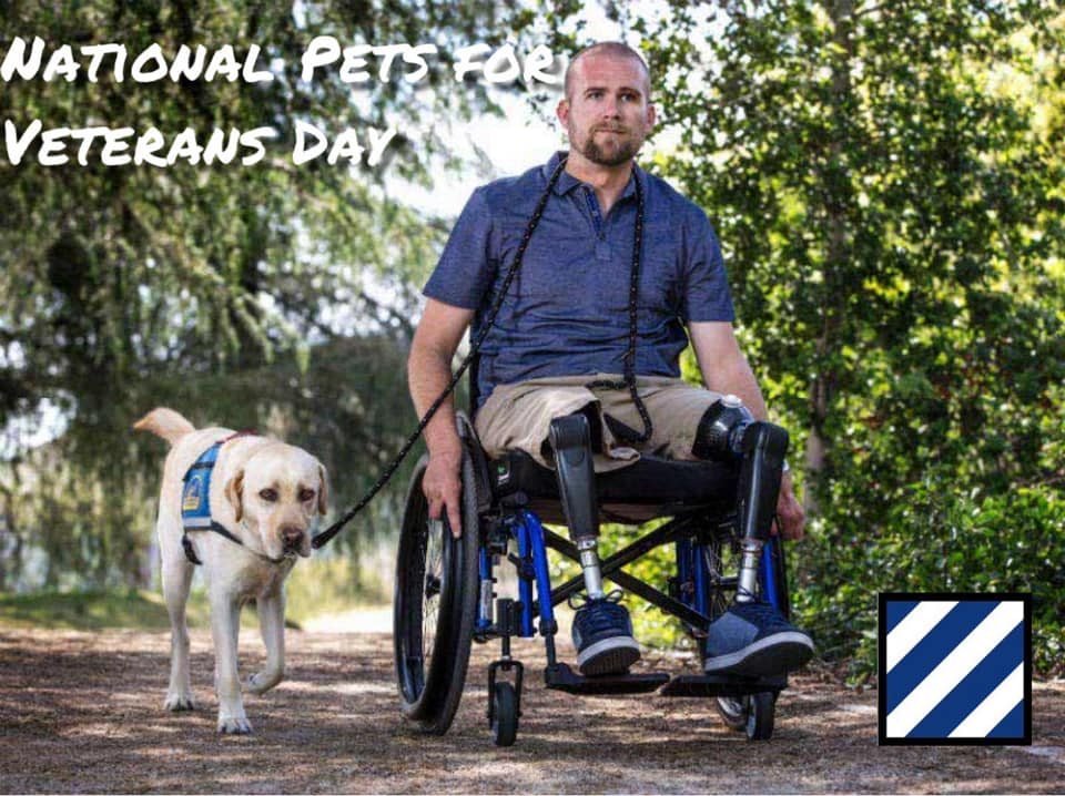 National Pets for Veterans Day Wishes Beautiful Image