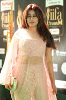 Nidhi Subbaiah Glamorous Pics in Transparent Peachy Gown at IIFA Utsavam Awards 012.JPG