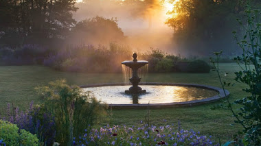 Atardecer en el jardín azul de Narborough Hall Gardens