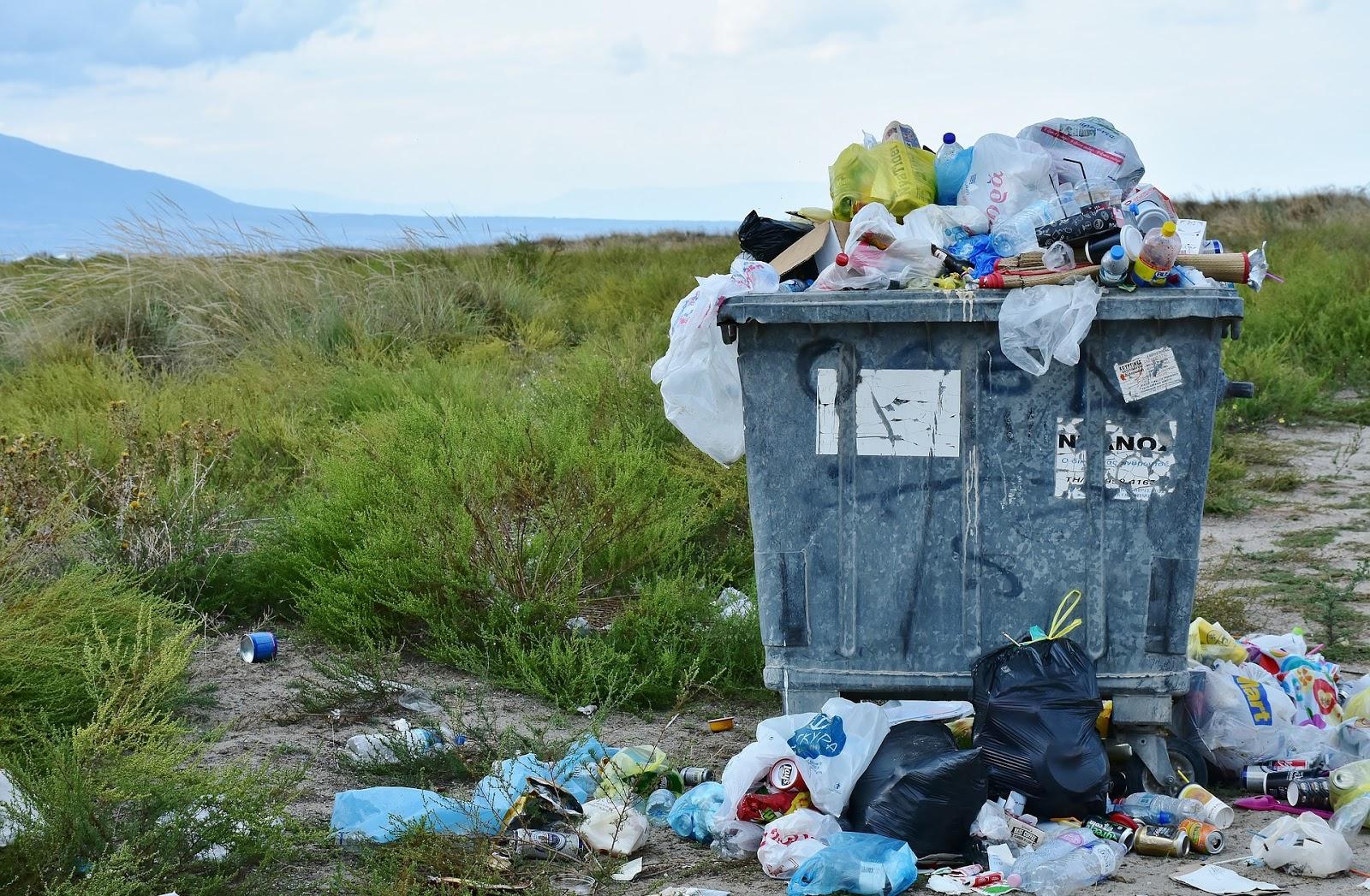 Plastikowe worki i śmieci rozsypane wokół kontenera na odpady na tle dzikiej przyrody