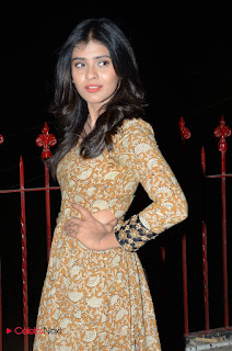 Heeba Patel in ugly brown dress at Eedo Rakam Aado Rakam Gummadikaya Function