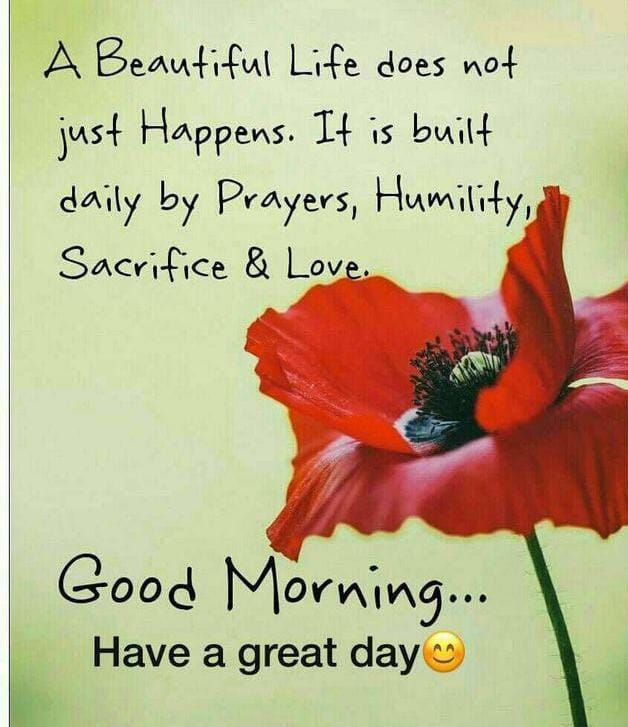 Good Morning Wishes Quotes with Flowers