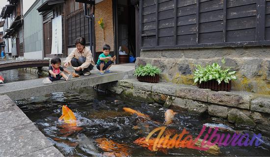 InstaLiburan - Viral Selokan Di Jepang Ini Jernih dan Berisi Ikan Koi