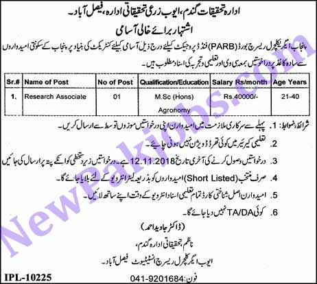 today-jobs-in-faisalabad
