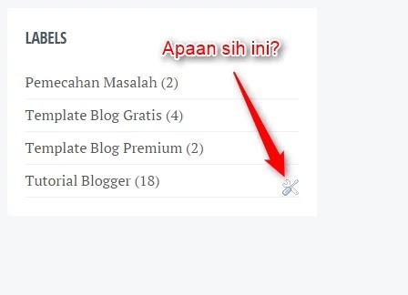 Trik Blogger Pemula Cara Menghilangkan Icon Obeng di Blog