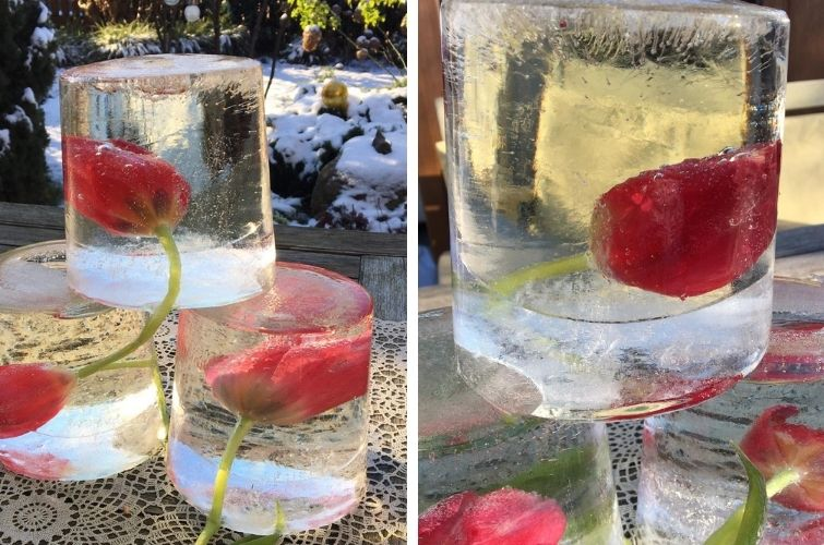 Winterdeko bei Frost und Eis