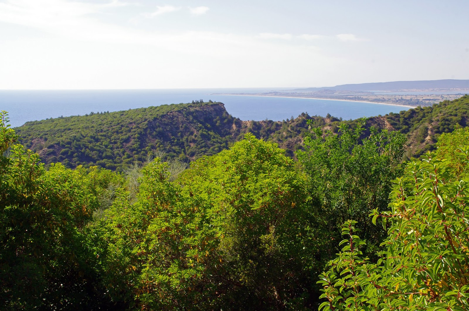 View of Gallipoli from the Nek