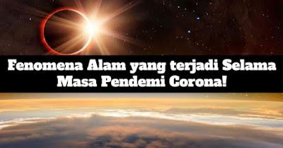 fenomena alam selama masa pandemi corona, covid-19