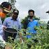 Bupati Agam Tinjau Ketersidiaan Pangan Antisipasi Kondisi ditengah Pandemi Copid-19
