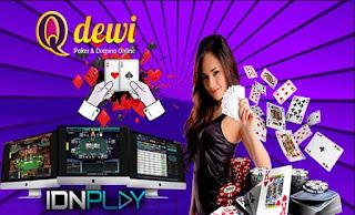Free Chips Judi Live Poker Online Server IDN QDewi.net