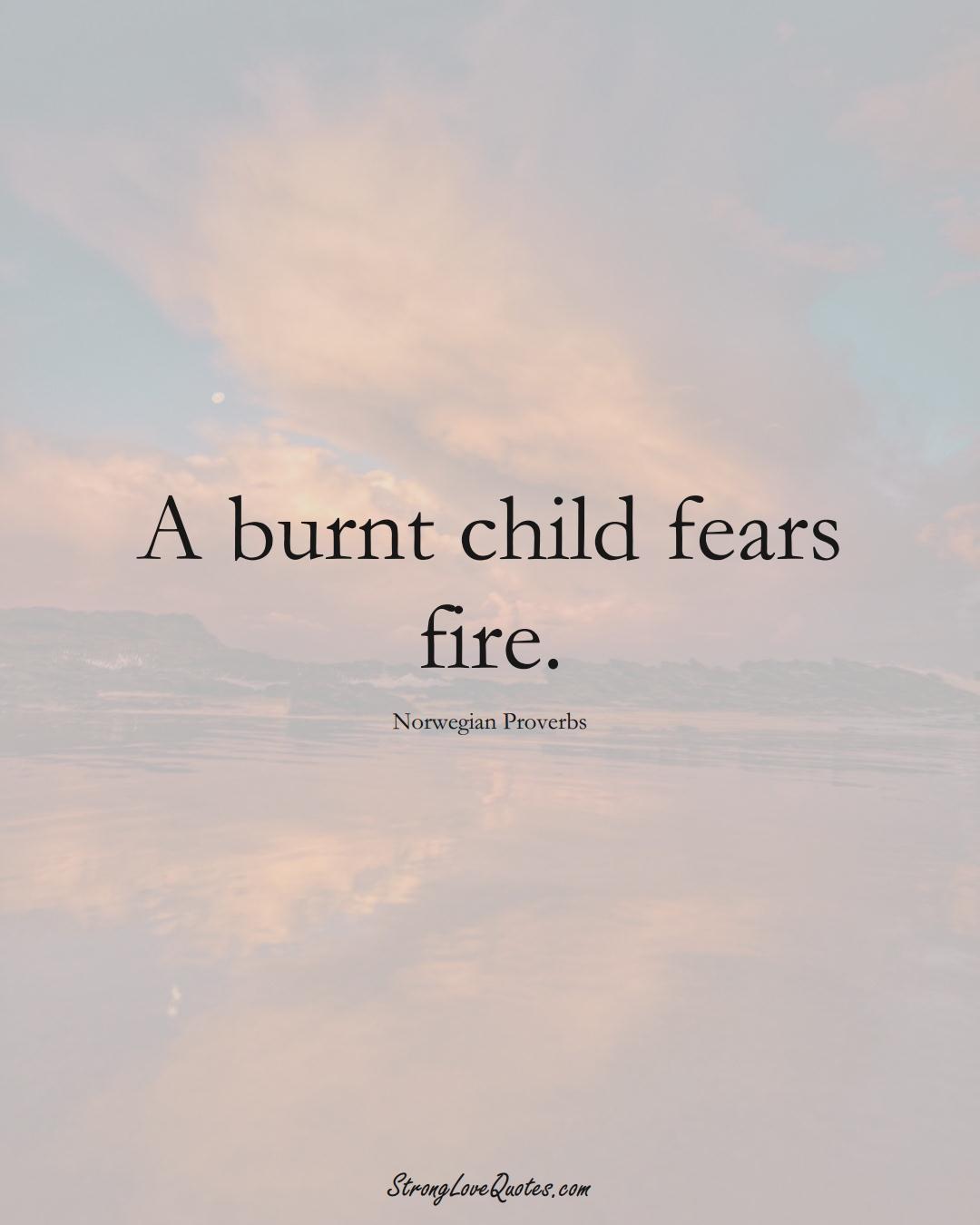 A burnt child fears fire. (Norwegian Sayings);  #EuropeanSayings