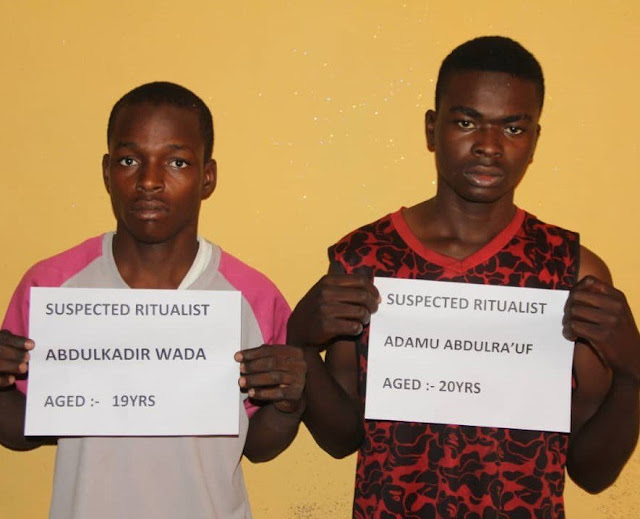 Two Teenagers arrested after removing a Girl's private part for N500,000 in Bauchi state
