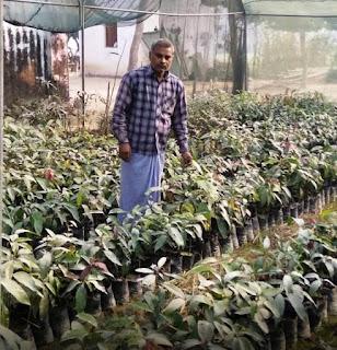 घाटे का सौदा नहीं है बागवानी, जानिए रामजीत किसान की जुबानी | #NayaSaveraNetwork