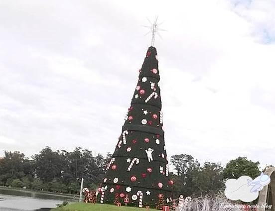 Árvore de Natal do Ibirapuera 2017, Embarque neste blog