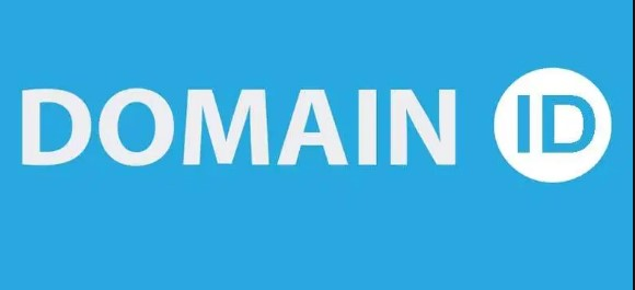 Advantages of Using a Domain (dot) ID