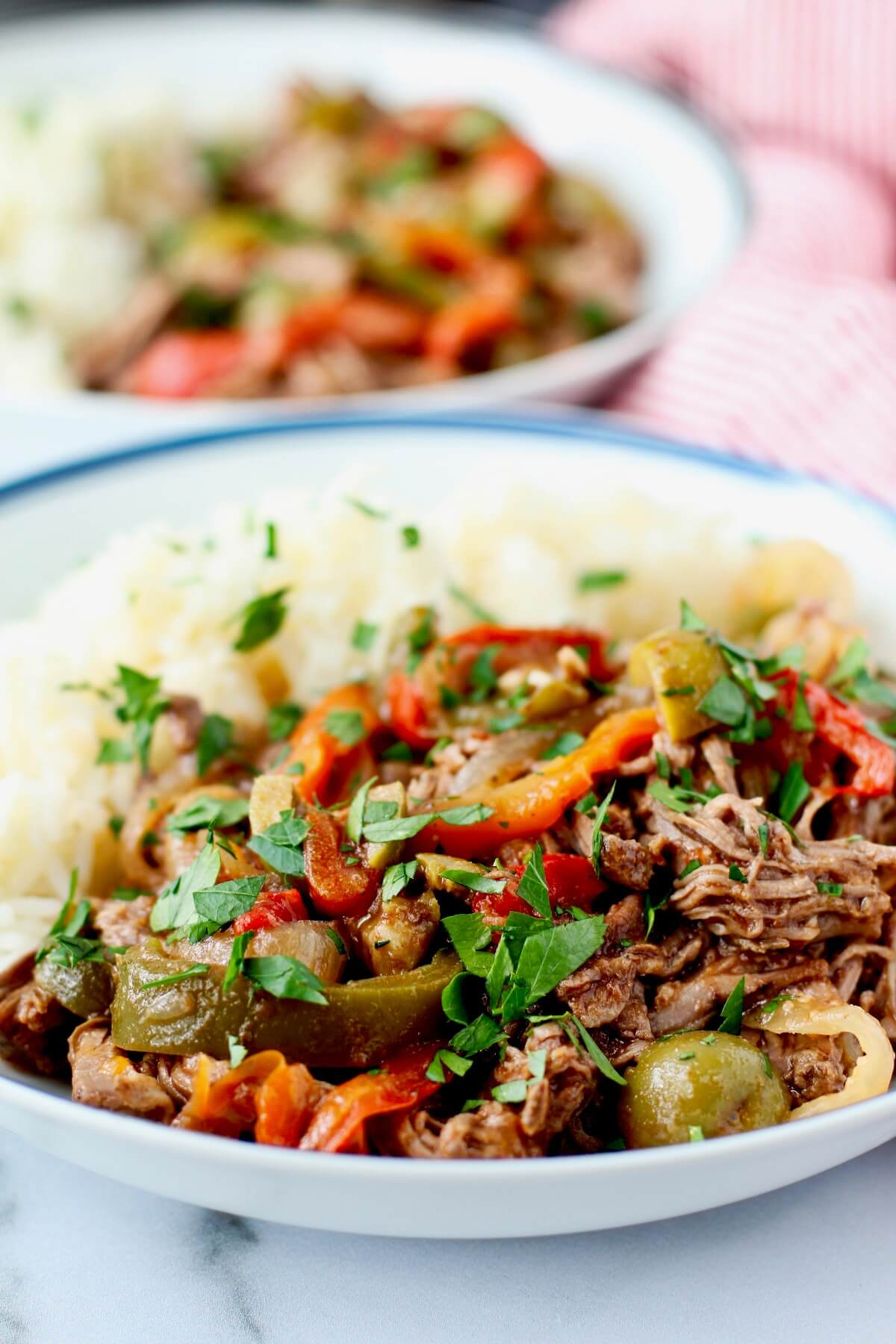 Ropa vieja with white rice