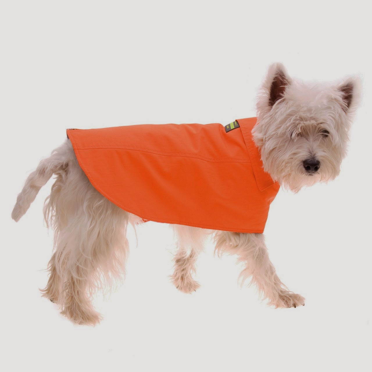 Rules of the Jungle: The designer dog coats for long winters
