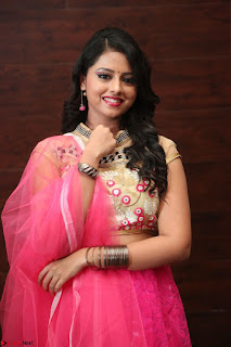 Geethanjali sizzles in Pink at Mixture Potlam Movie Audio Launch 047.JPG