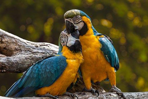 ब्यूटीफुल प्यार वाली कहानी || cute love stories in hindi