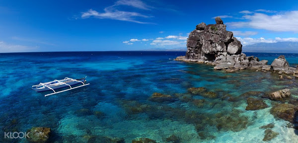 Apo Island Day Trip from Dumaguete City