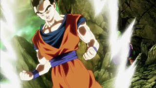Dragon Ball Super – Dublado – Episódio 118