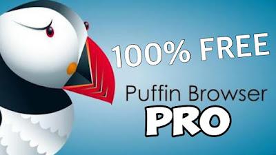 El Navegador de Web de Puffin Pro es increíblemente rápido.