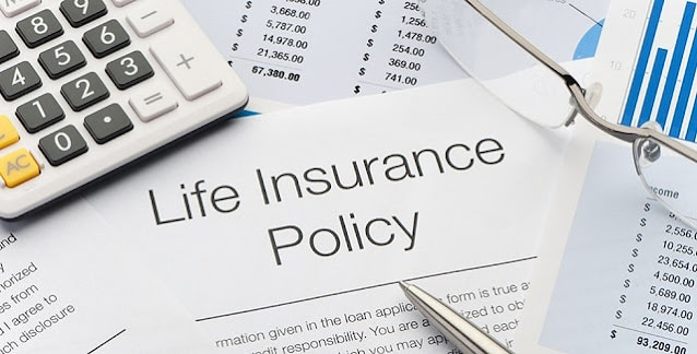 life insurance basics policy coverage insure family financial security