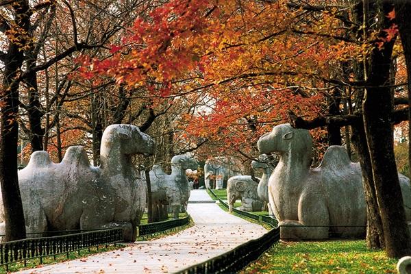 สุสานหลวงหมิงเซี่ยวหลิง (Ming Xiaoling Mausoleum: 明孝陵)