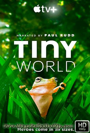 Tiny World Temporada 2 [1080p] [Latino-Ingles] [MEGA]