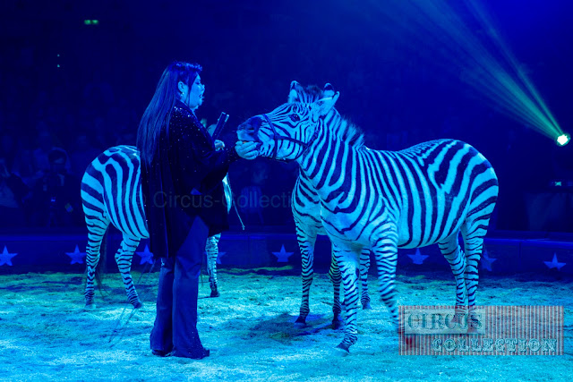 Geraldine Katarina Knie et les zèbres du cirque knie