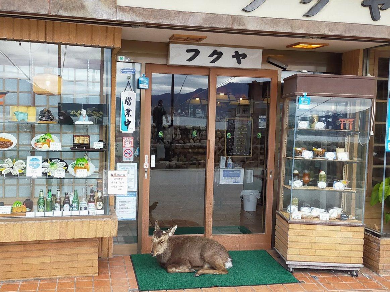 鹿がいい子して座ってる。お店もノスタルジックでいい感じです。