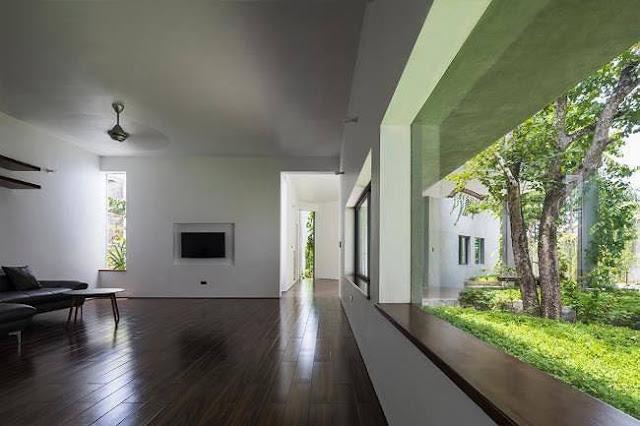 Ngôi nhà tuyệt đẹp, siêu độc đáo 'nuốt' trọn 5 cây gỗ quý ở Nghệ An lên báo Tây 4