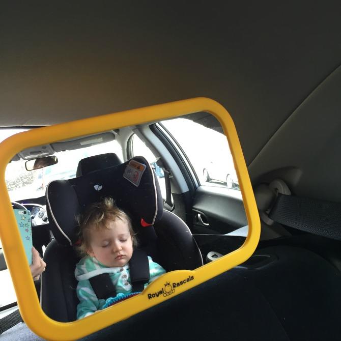 Squidge sleeping in the car