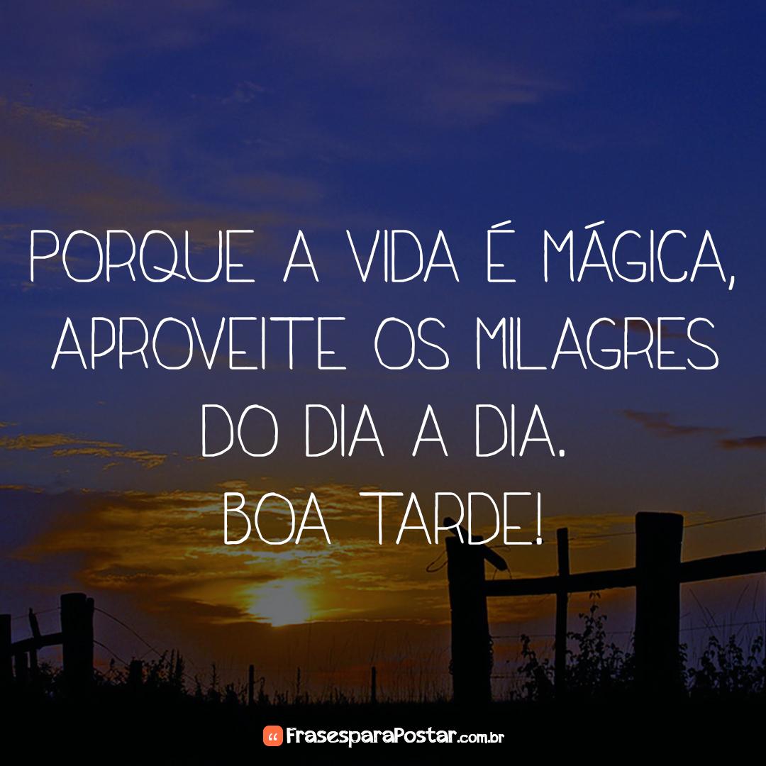 Porque a vida é mágica, aproveite os milagres do dia a dia. Boa tarde!