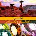 تحميل كتاب أطلس الصخور والمعادن pdf