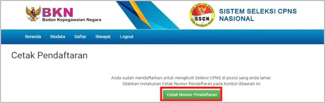 sistem seleksi cpns nasional 2019/2020