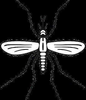 Malaria - Pengertian, Gejala, Penyebab, dan Pengobatan