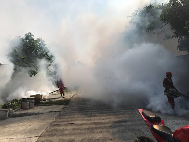 Cegah Wabah DBD, Yonif PR 305 Laksanakan Fogging