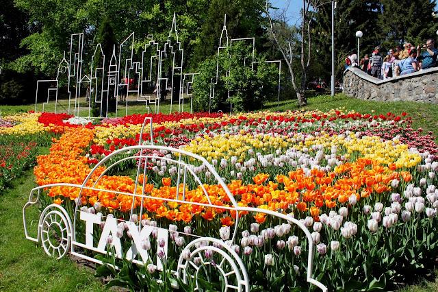 Цветочная инсталляция Дарницкого района