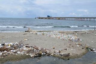 Oficina Senatorial San Cristóbal tiene este viernes jornada limpieza en playa Gringo, Haina