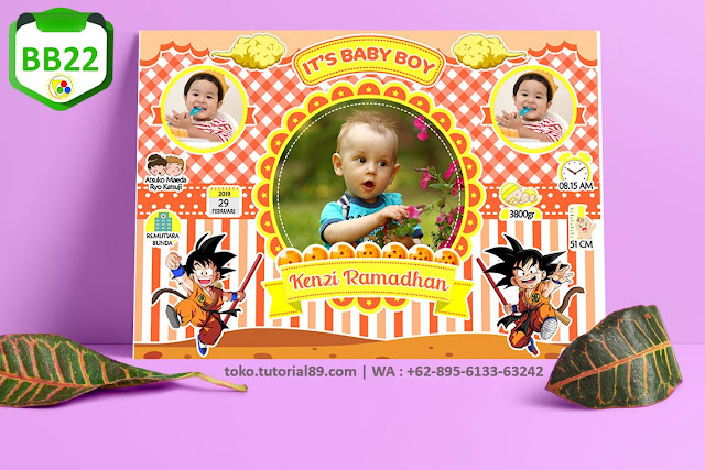 Biodata Bayi Costume Boy Girl Kode BB22 | Dragon Ball