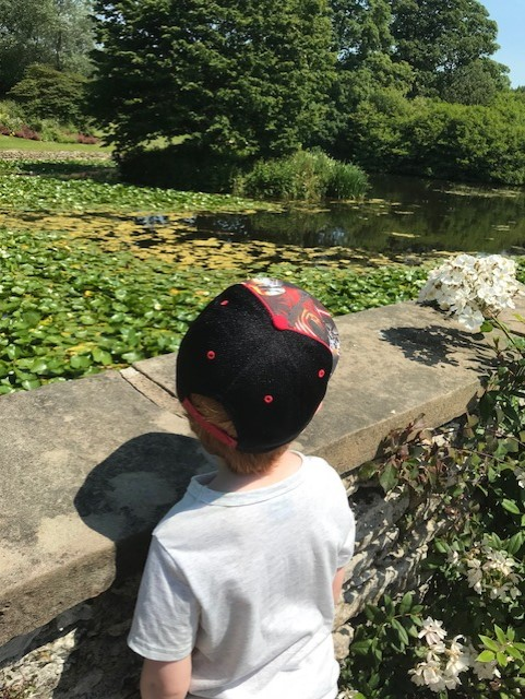 Little boy looking at a pond full of lilys