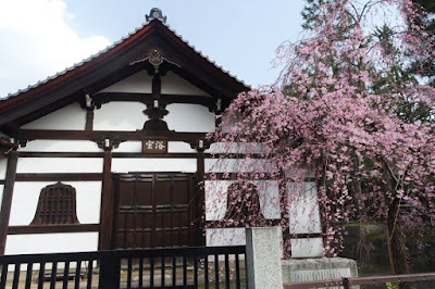 10D9N Spring Japan Trip: Yasaka Shrine, Gion