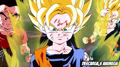 Dragon Ball Z - El Combate Final 1/1 Audio: Latino Servidor: Mediafire/Mega