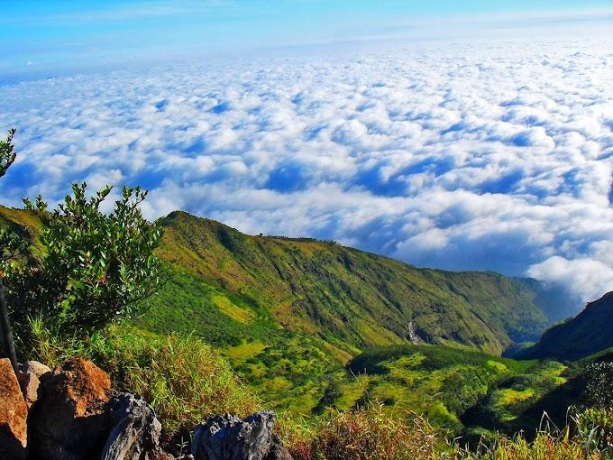 Jalur Pendakian Gunung Ungaran via Mawar