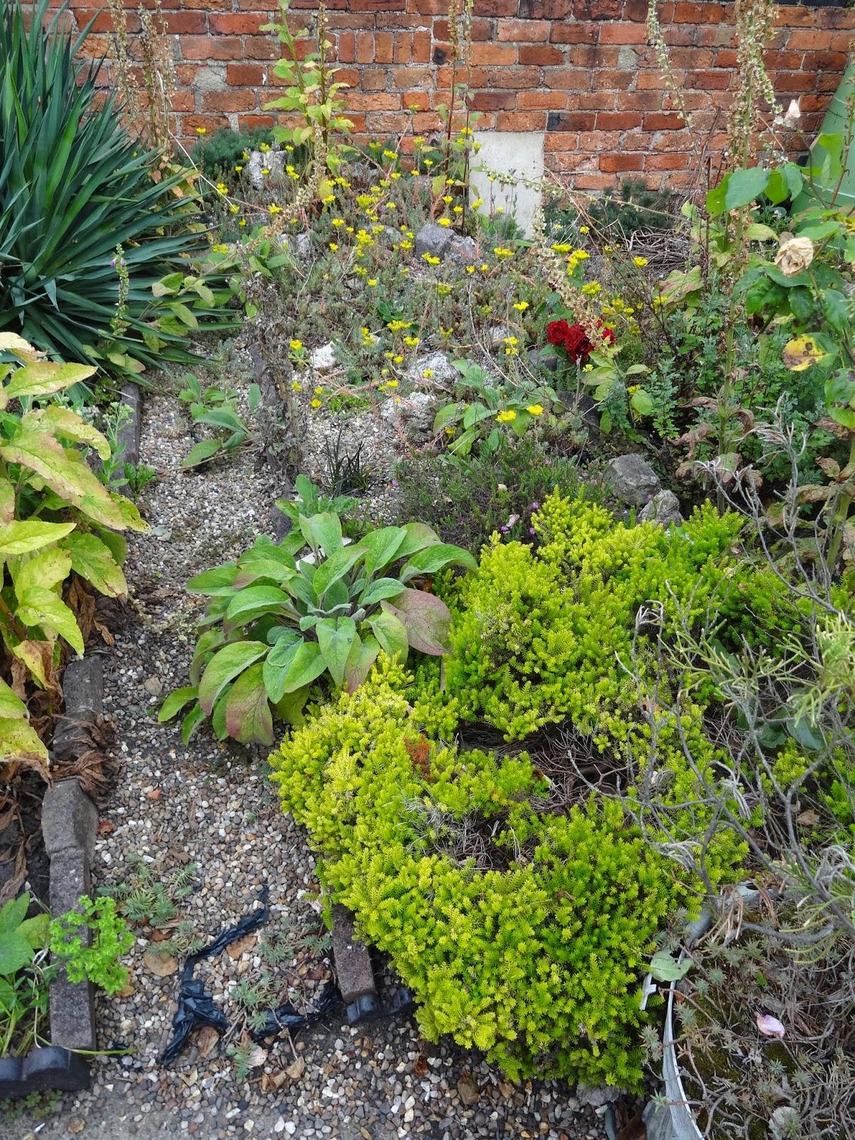 rock bed in victorian garden