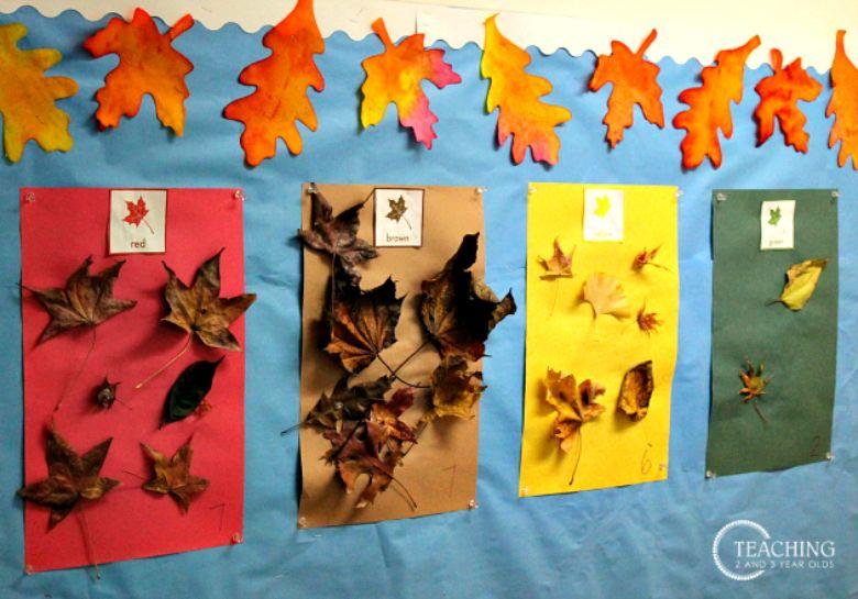 preschool leaf sorting activity
