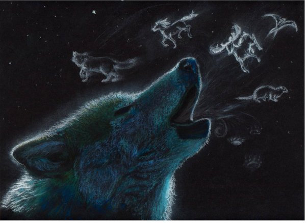Wolf Anime Wallpaper Animals Library