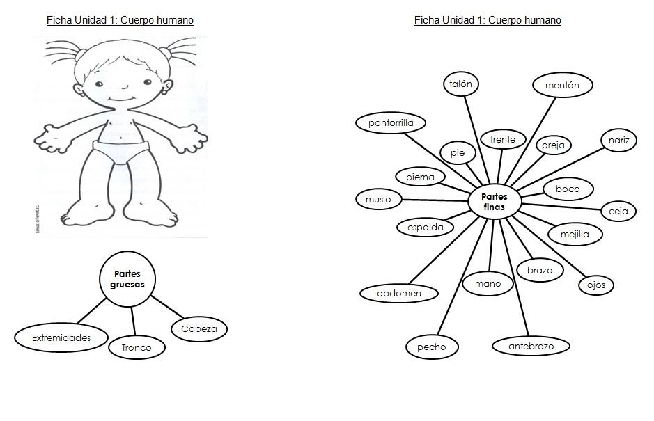 Aprendiendo y enseñando en primer grado: Cuadernillo sobre