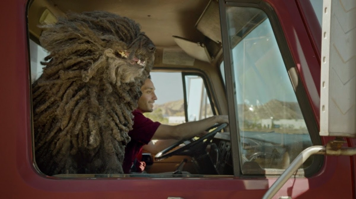 Dr. Pepper's New Mop Dog Ad Features An Adorable Puli